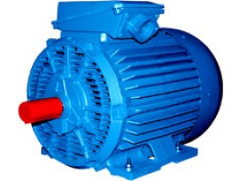 Электродвигатели бризгозащищенного исполнения 4АМН, 5АН, 5АМН, 5АНМ (0)