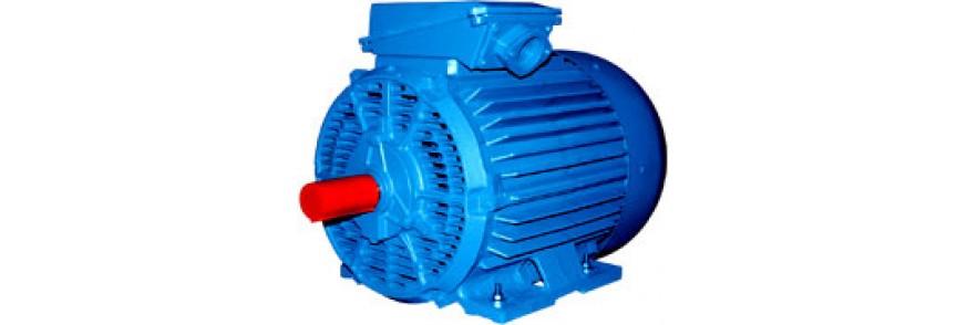 Электродвигатели бризгозащищенного исполнения 4АМН, 5АН, 5АМН, 5АНМ